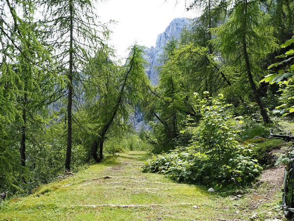 MTB Transalp Slowenien, Trail zum Vrsic Pass