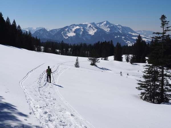 Piesenkopf, Schneeschuhwandern in den Allgäuer Alpen, Panorama.