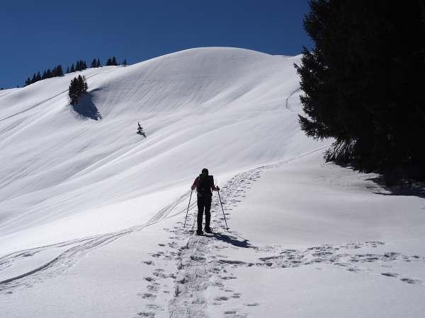 Piesenkopf, Schneeschuhwandern in den Allgäuer Alpen, den Gipfel im Blick.