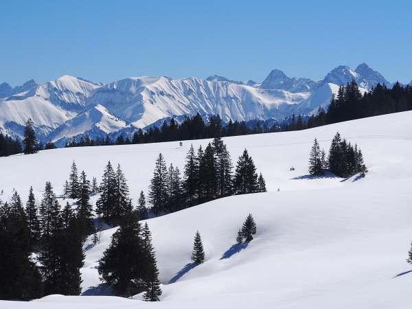 Piesenkopf, Schneeschuhwandern in den Allgäuer Alpen, Panorama