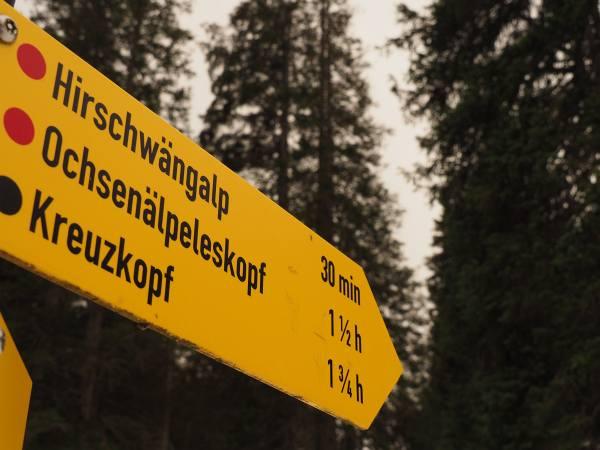 Wegweiser oberhalb der Jägerhütte beid er Schneeschuhwanderung zum Ochsenälpelskopf
