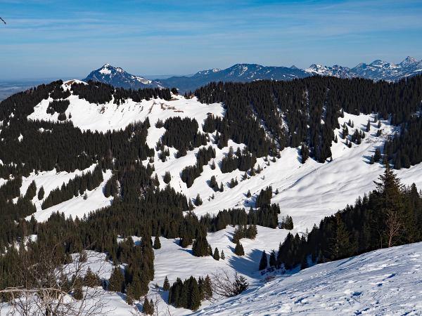 Schneeschuhwanderung zum Rangiswanger Horn bei Gunzesried, Blick zurück zum Rangiswanger Horn und dem Grünten dahinter