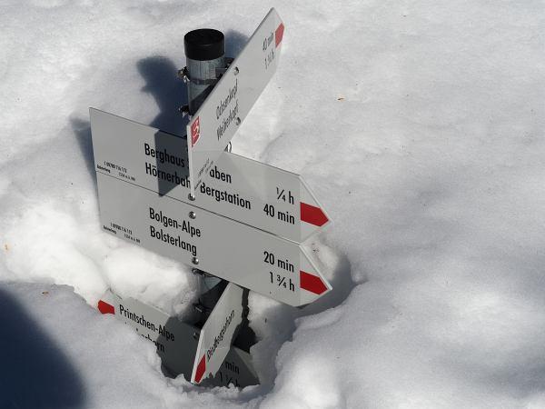 Schneeschuhwanderung zum Rangiswanger Horn bei Gunzesried, Eingeschneiter Wegweiser zur Printschen-Alpe