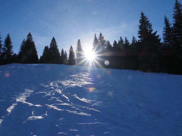 Schneeschuhwanderung zum Rangiswanger Horn bei Gunzesried, Traumwetter bei der Schneeschuhtour