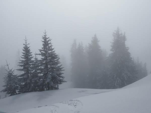 Großer Ochsenkopf, Schneeschuhwandern im Allgäu.