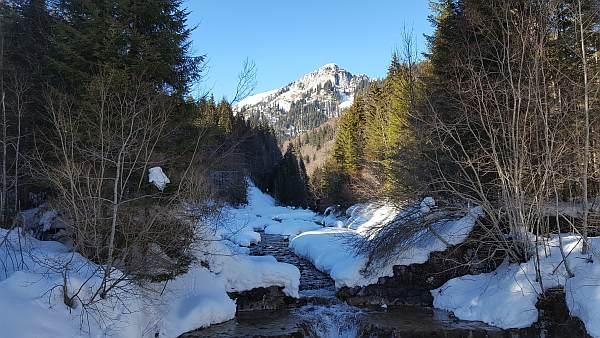 Scheinberg, Schneeschuhwandern im Winter, Bach.