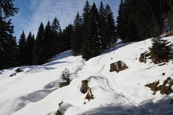 Aufstieg über den Wiesenweg von Pfronten zur Kappeler Alp