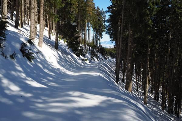 Unberührte Wege bei der Winterwanderung