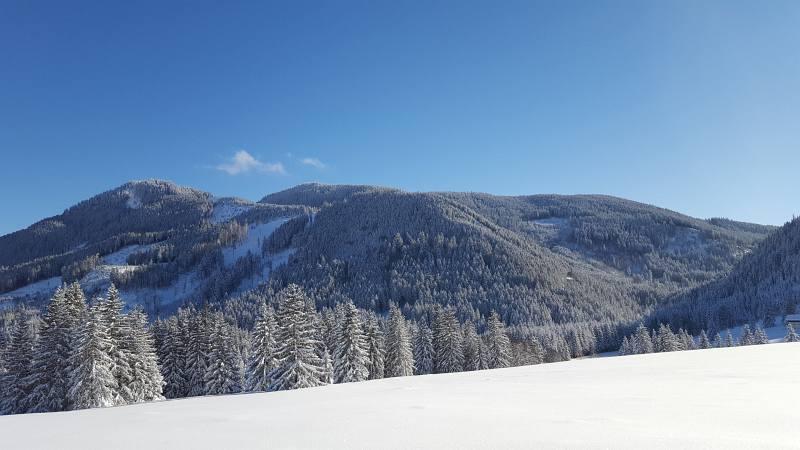 Winterwandern zur Buronhütte und Haslacher Alpe, Foto 1
