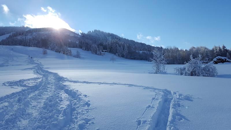 Winterwandern zur Buronhütte und Haslacher Alpe, Foto 2