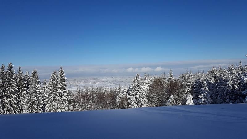 Winterwandern zur Buronhütte und Haslacher Alpe, Foto 4