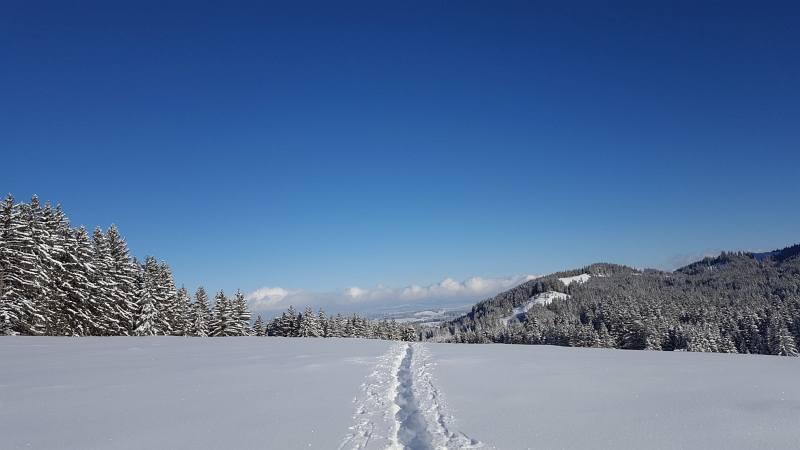 Winterwandern zur Buronhütte und Haslacher Alpe, Foto 6