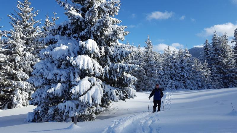Winterwandern zur Buronhütte und Haslacher Alpe, Foto 7