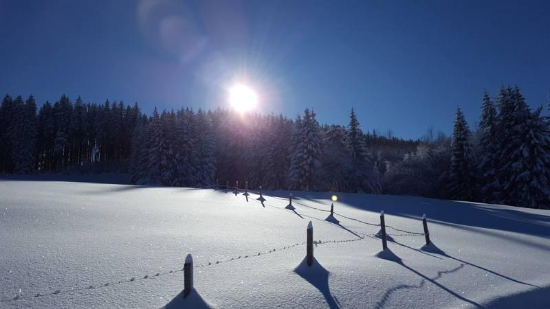 Winterwandern zur Buronhütte und Haslacher Alpe, Foto 8