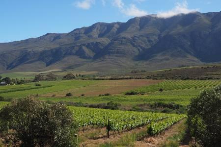 Südafrikareise 2014, Foto 23, Landschaft