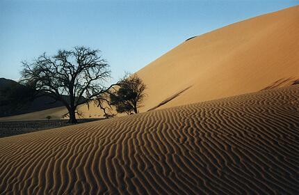 Foto Namibia, Düne